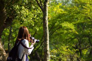 10月23日開催 写真が学べるネイチャーガイドツアー