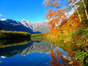 【秋の特別企画 Vol.2】ネイチャーガイドが案内する秋の大正池散策ツアー
